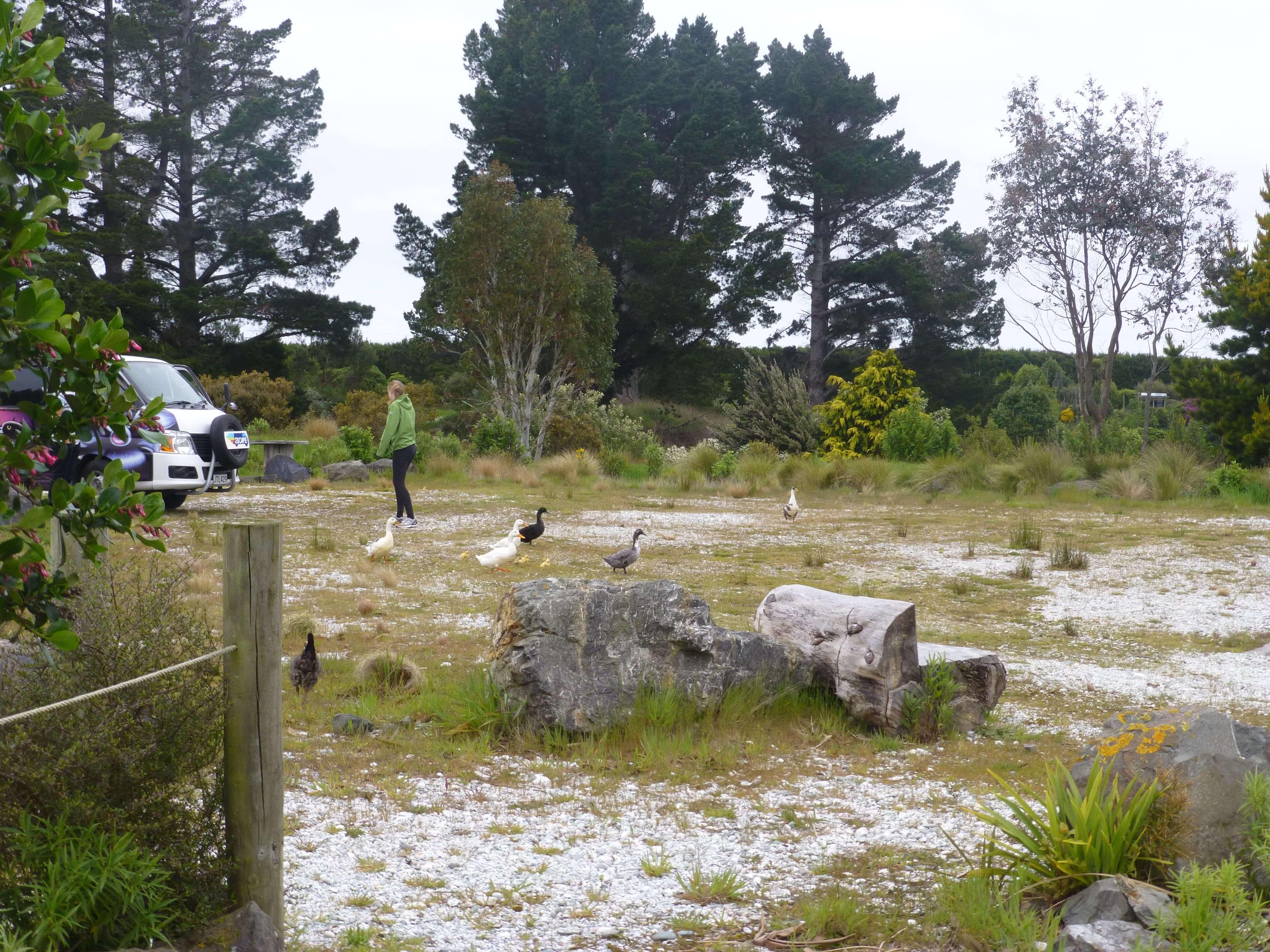 Lignite Pit Secret Garden-weit weg reisen 11