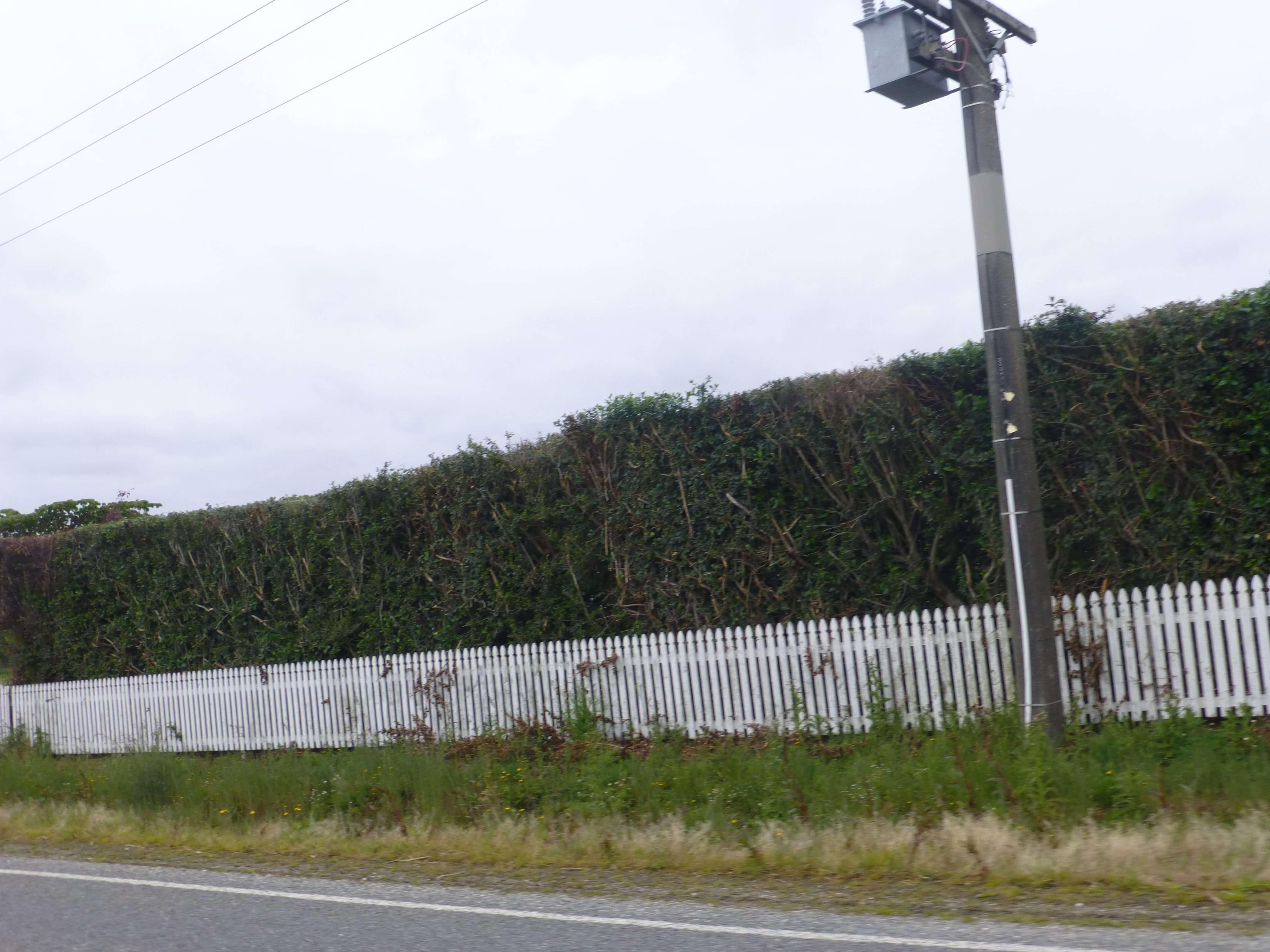 Lignite Pit Secret Garden-weit weg reisen 3