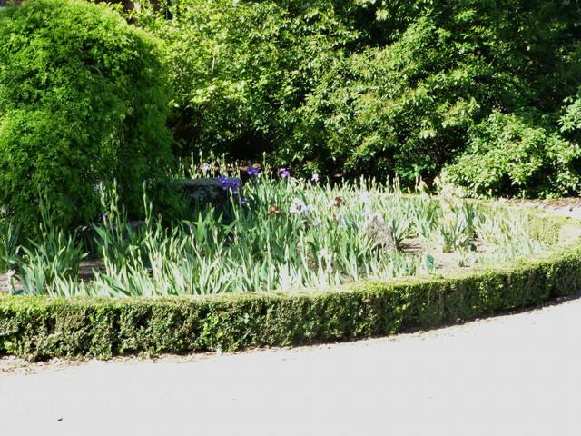 Im botanischen Garten von Christchurch