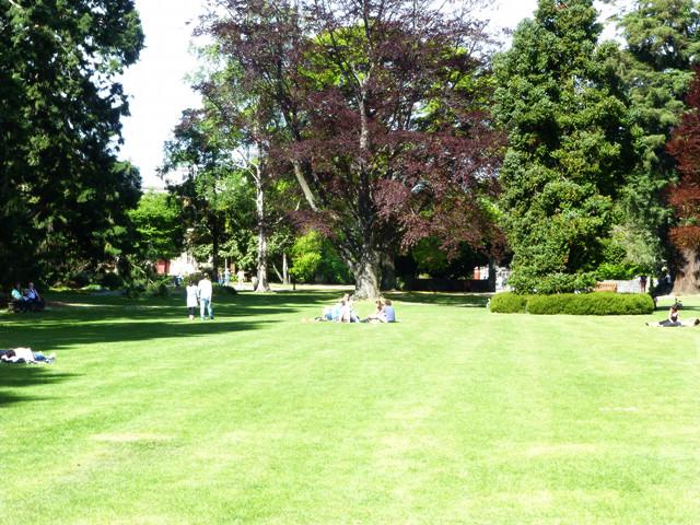 Sonne geniessen, im botanischen Garten von Christchurch