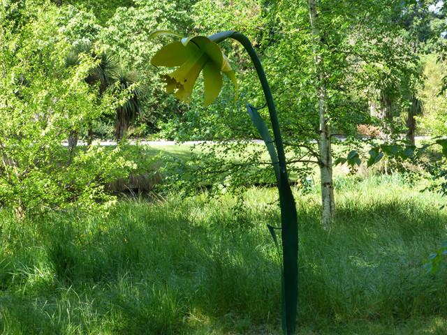 Skulptur Narzisse, botanischer Garten Christchurch
