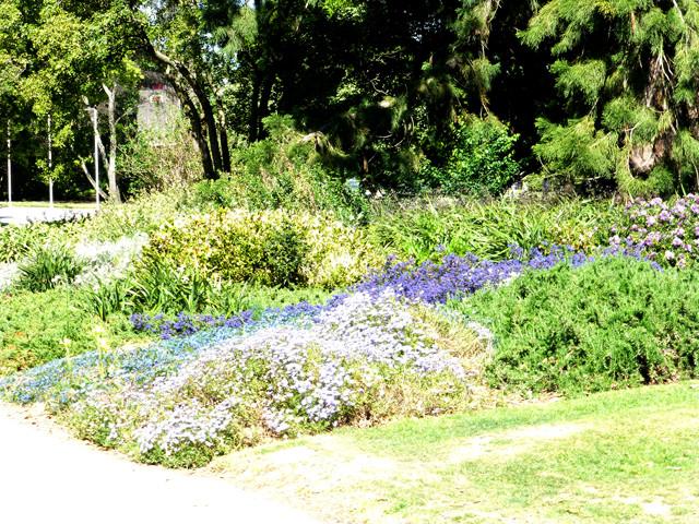 Botanischer Garten Christchurch, Blumenbeet Frühling