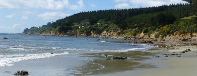 Zwischen Moeraki und Dunedin