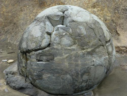 Moeraki Boulders 7