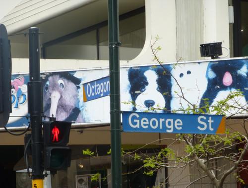 Neuseeland, Dunedin, Octagon-Georgestreet 2