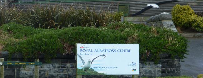 Albatross Center, Otago Peninsula
