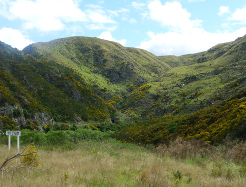 Dunedin. Taeri Gorge, Deep Stream 5