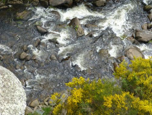 Dunedin. Taeri Gorge, Deep Stream 9