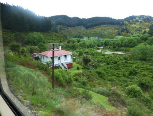 Dunedin. Taeri Gorge, Parera 2