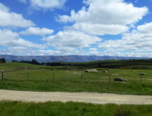 Dunedin, Taeri Gorge, Pukerangi 5