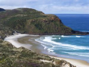 Otago Peninsula an der Sandflybay 1