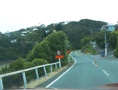 Otago Peninsula, Straße zum Albatross Center 4