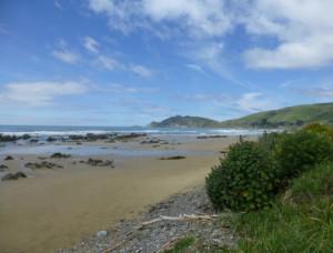 Kaka Point-Ostküste Neuseeland 3