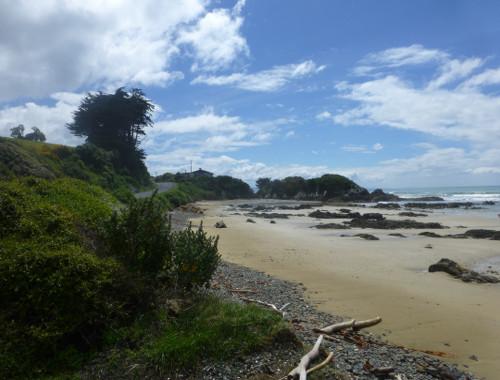 Kaka Point-Ostküste Neuseeland 6