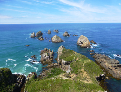 Nugget Point-Südinsel-Ostküste Neuseeland 12