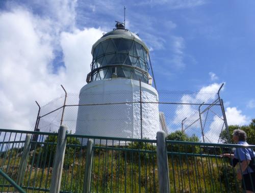 Nugget Point-Südinsel-Ostküste Neuseeland 15