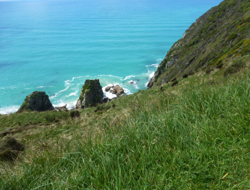 Nugget Point-Südinsel-Ostküste Neuseeland 2