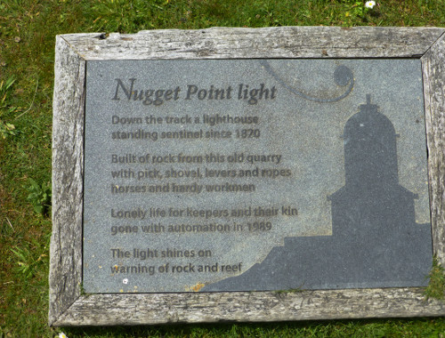 Nugget Point-Südinsel-Ostküste Neuseeland 25