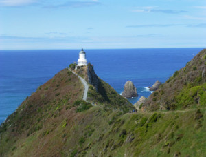 Nugget Point-Südinsel-Ostküste Neuseeland 4