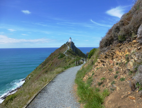 Nugget Point-Südinsel-Ostküste Neuseeland 7