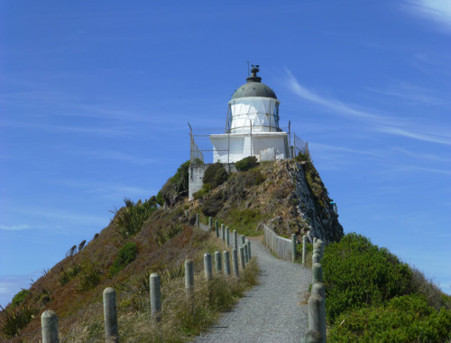 Nugget Point-Südinsel-Ostküste Neuseeland 9