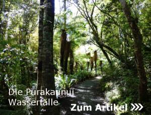 Zu den Purakaunui-Falls