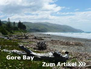 Gore Bay Beach, Treibholz