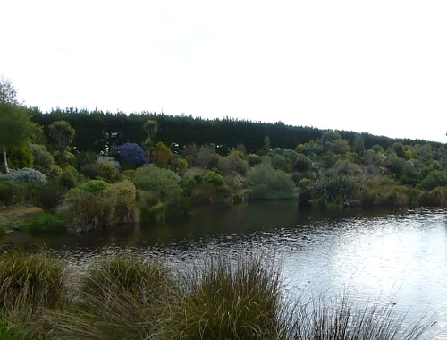 Lignite-Pit Scenic Stop, See im Garten