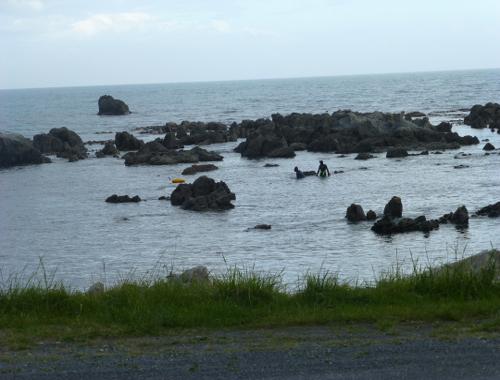 Neuseeland, an der Küste bei Kaikoura