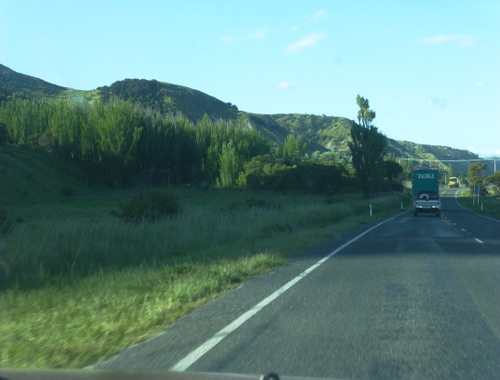 auf dem Weg nach Kaikoura, Neuseeland 3