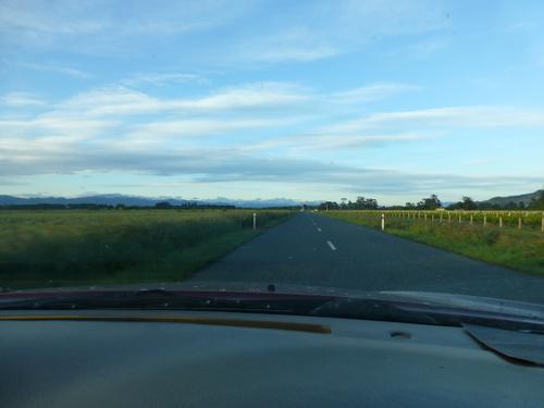 Blenheim, Neuseeland, Weinfelder 2