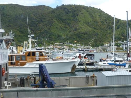am Yachthafen in Picton Neuseeland 8