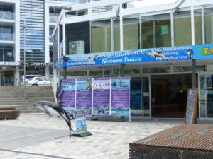 Erlebnisse in Picton Neuseeland