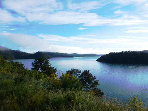 Queen Charlotte Drive, Picton, NZ 10