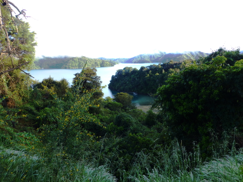 Queen Charlotte Drive, Picton, NZ 15