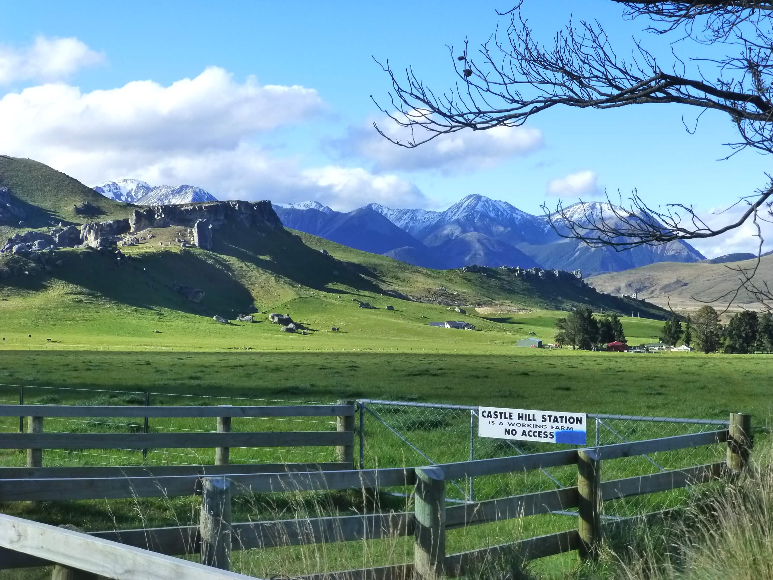 Castle Hill Neuseeland an der S73, Südinsel 3