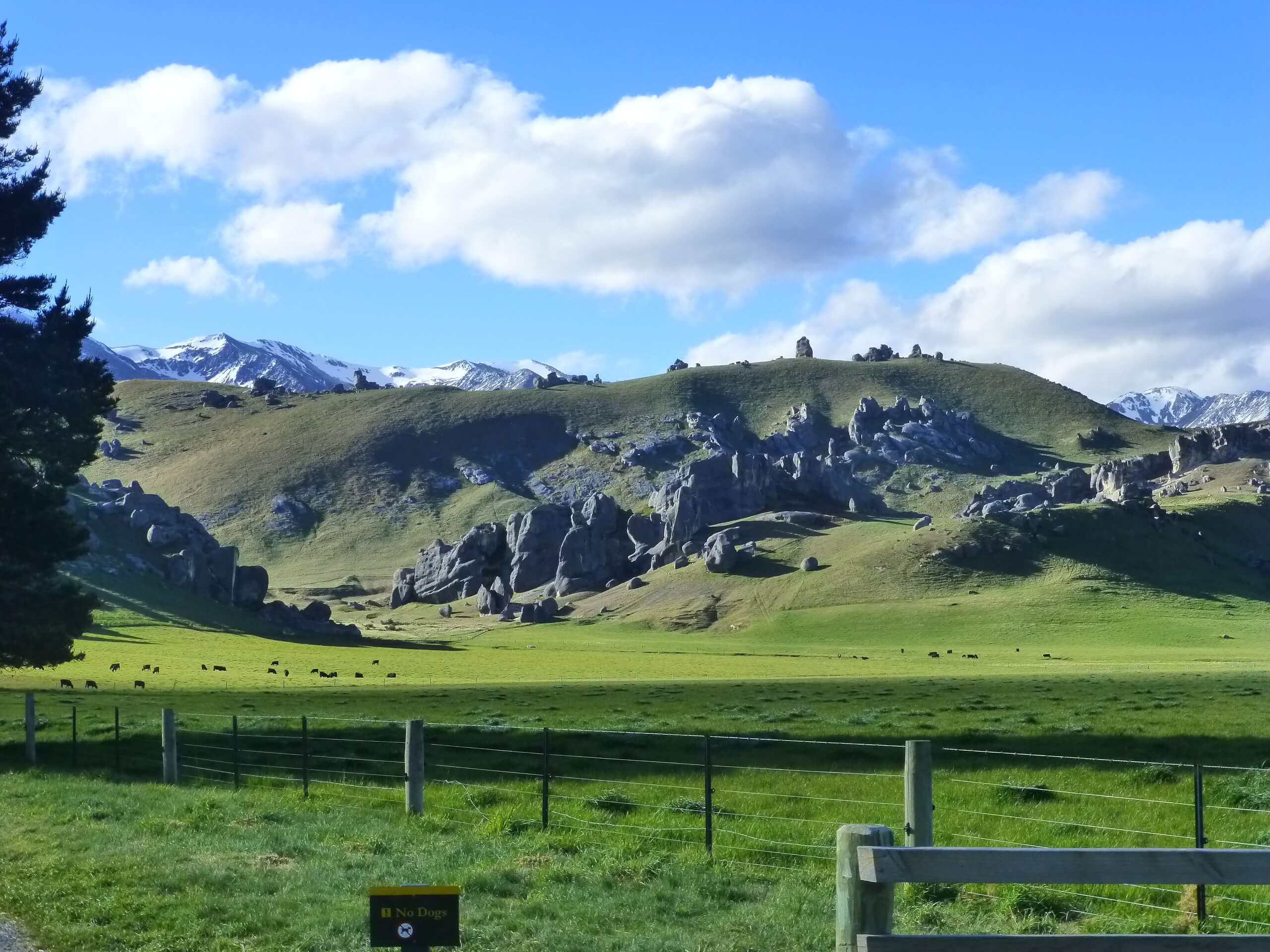 Castle Hill Neuseeland an der S73, Südinsel 5