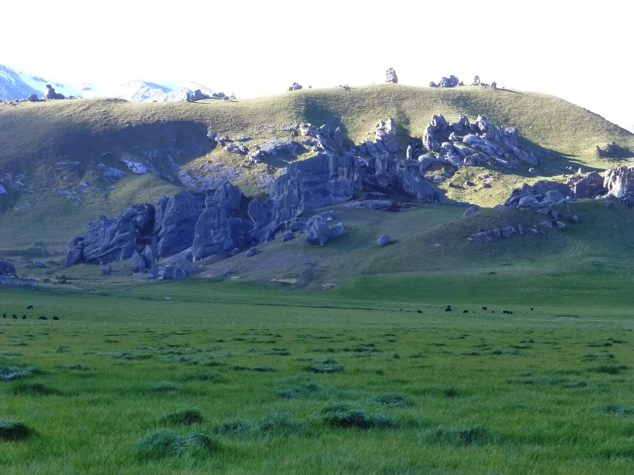 Castle Hill Neuseeland an der S73, Südinsel 8