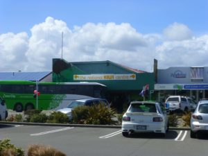 mitten in Hokitika, The National Kiwi Centre 1