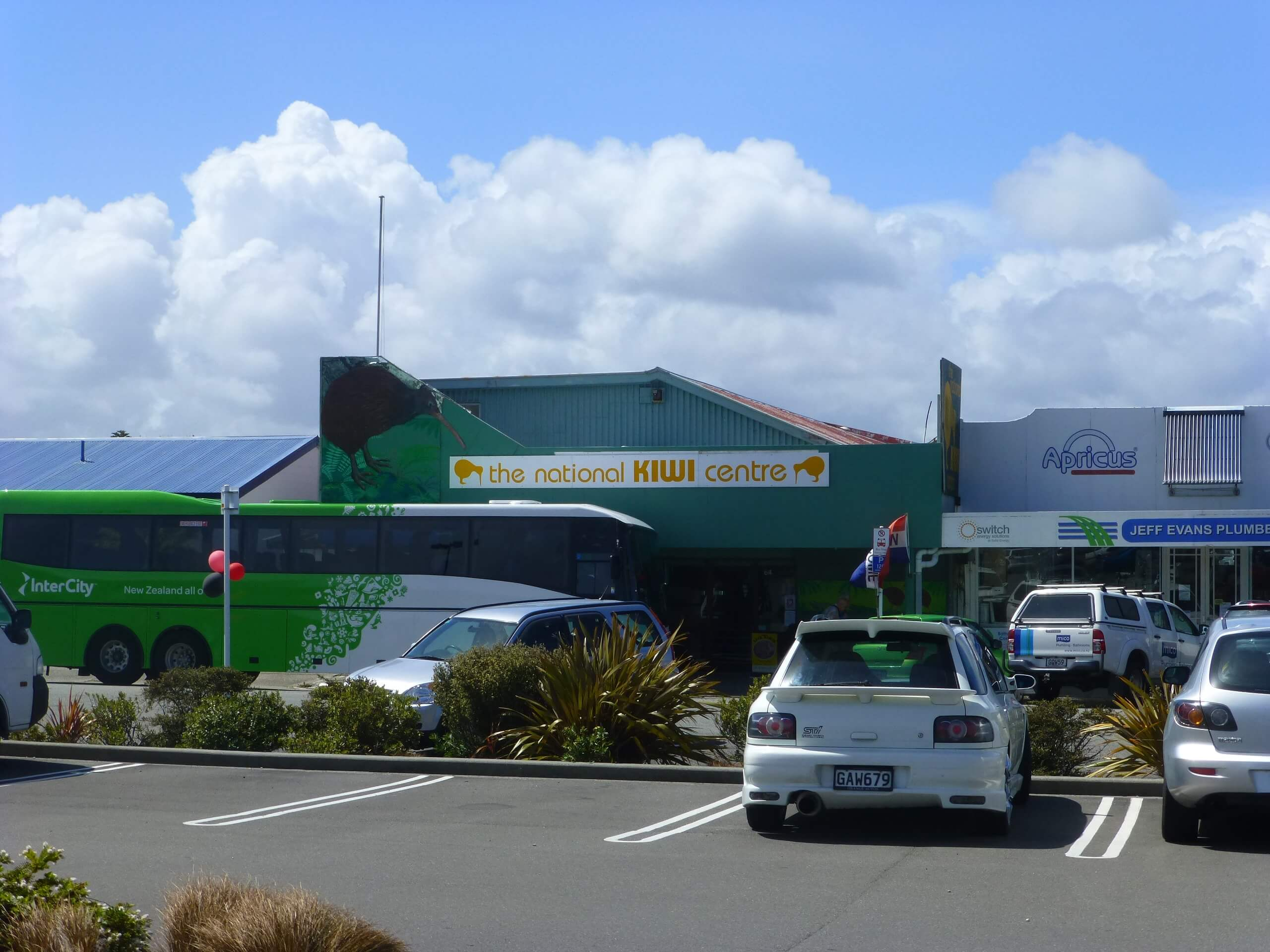 Hokitika, Zentrum, The National Kiwi Centre 1