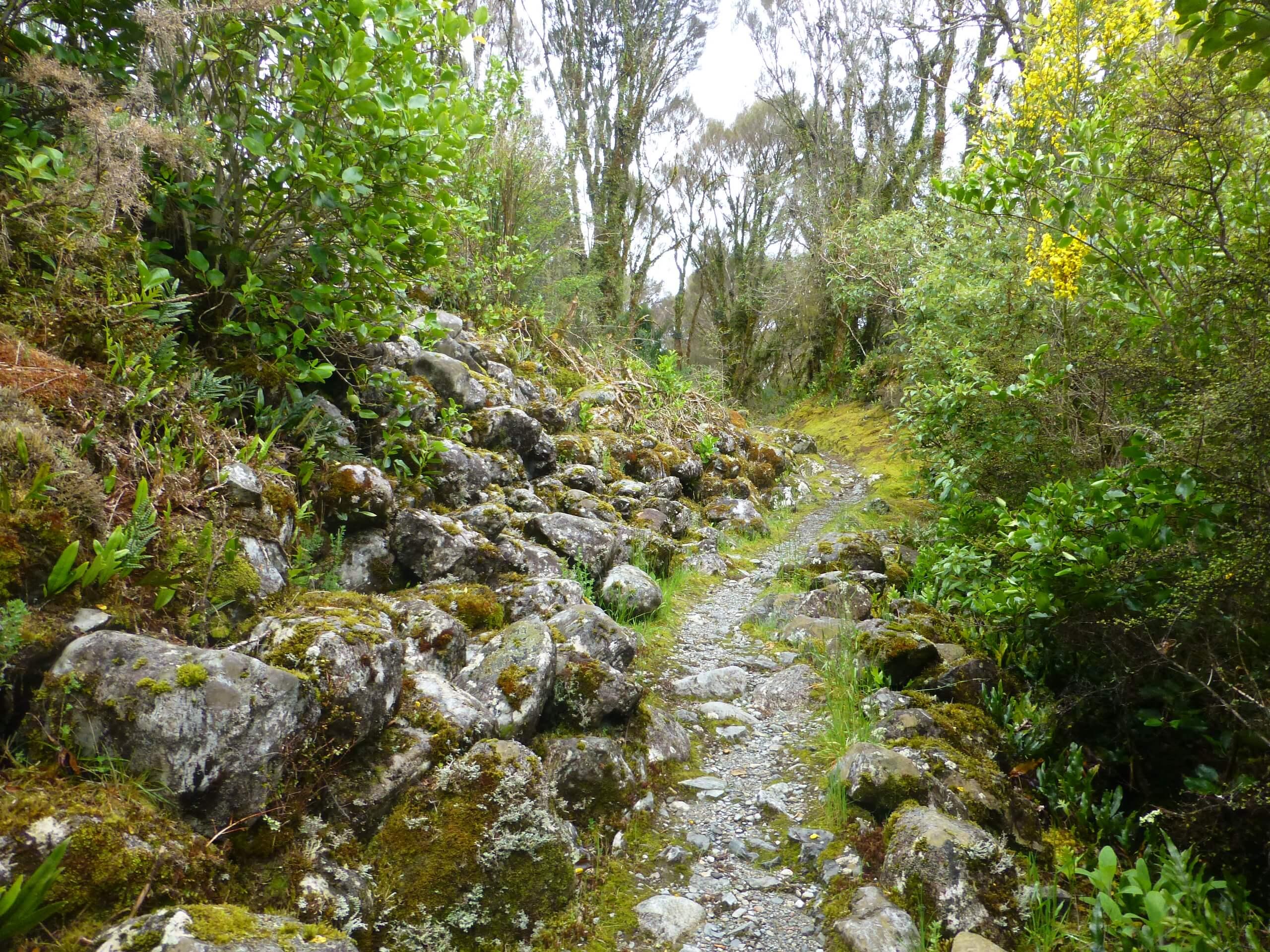 Londonderry Rock Neuseeland 8