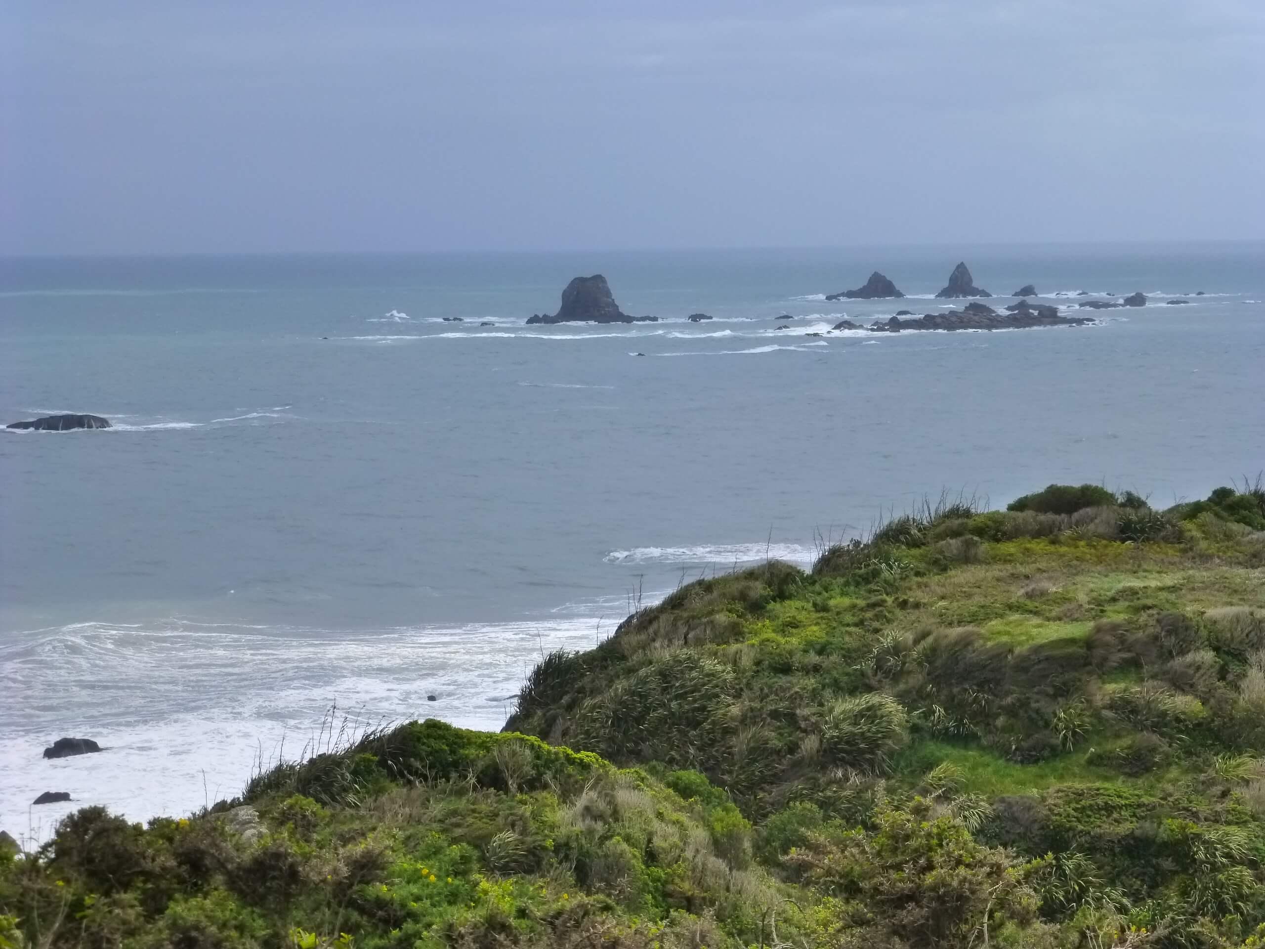 Cape Foulwind, NZ, Westküste 4