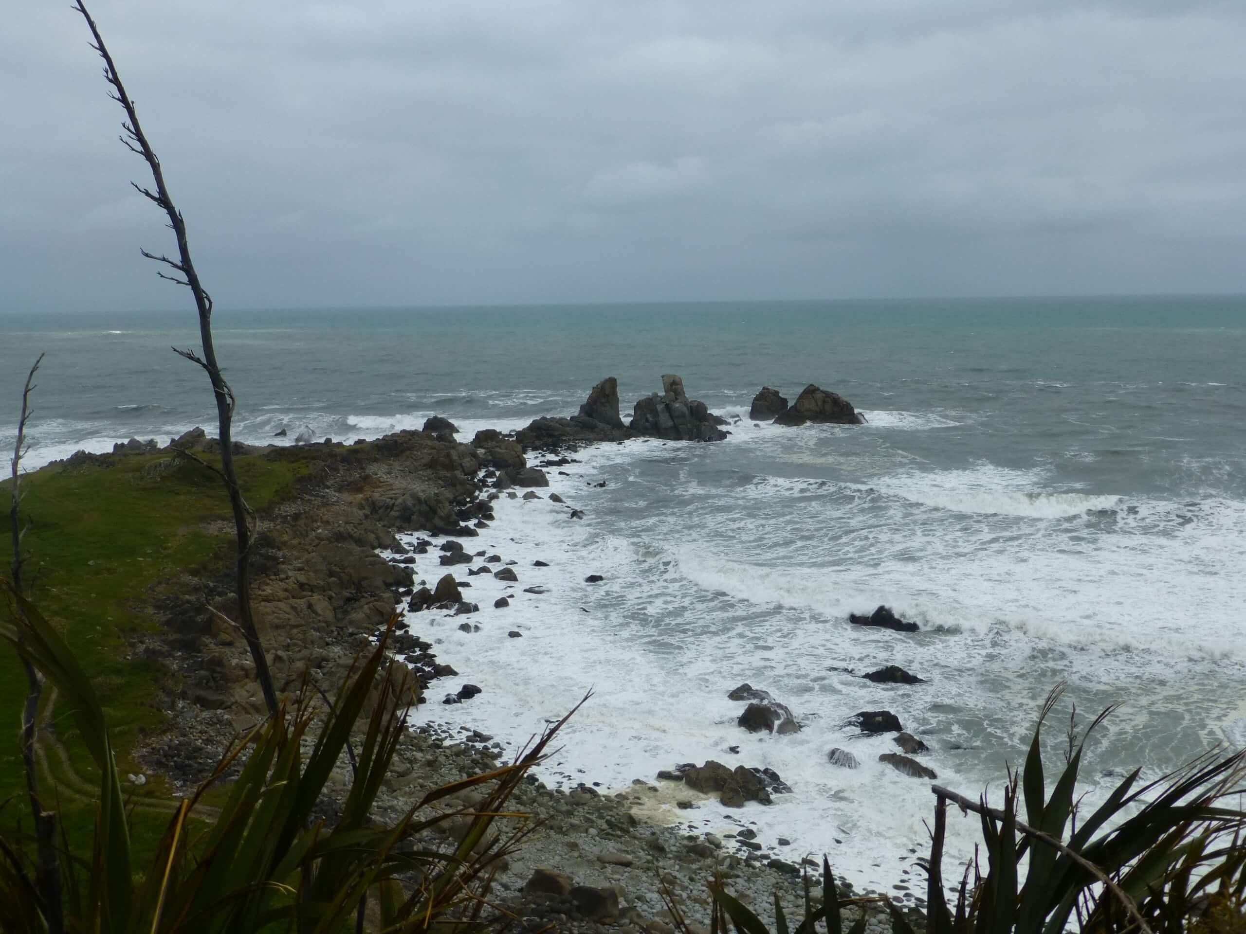 Cape Foulwind, NZ, Westküste 8