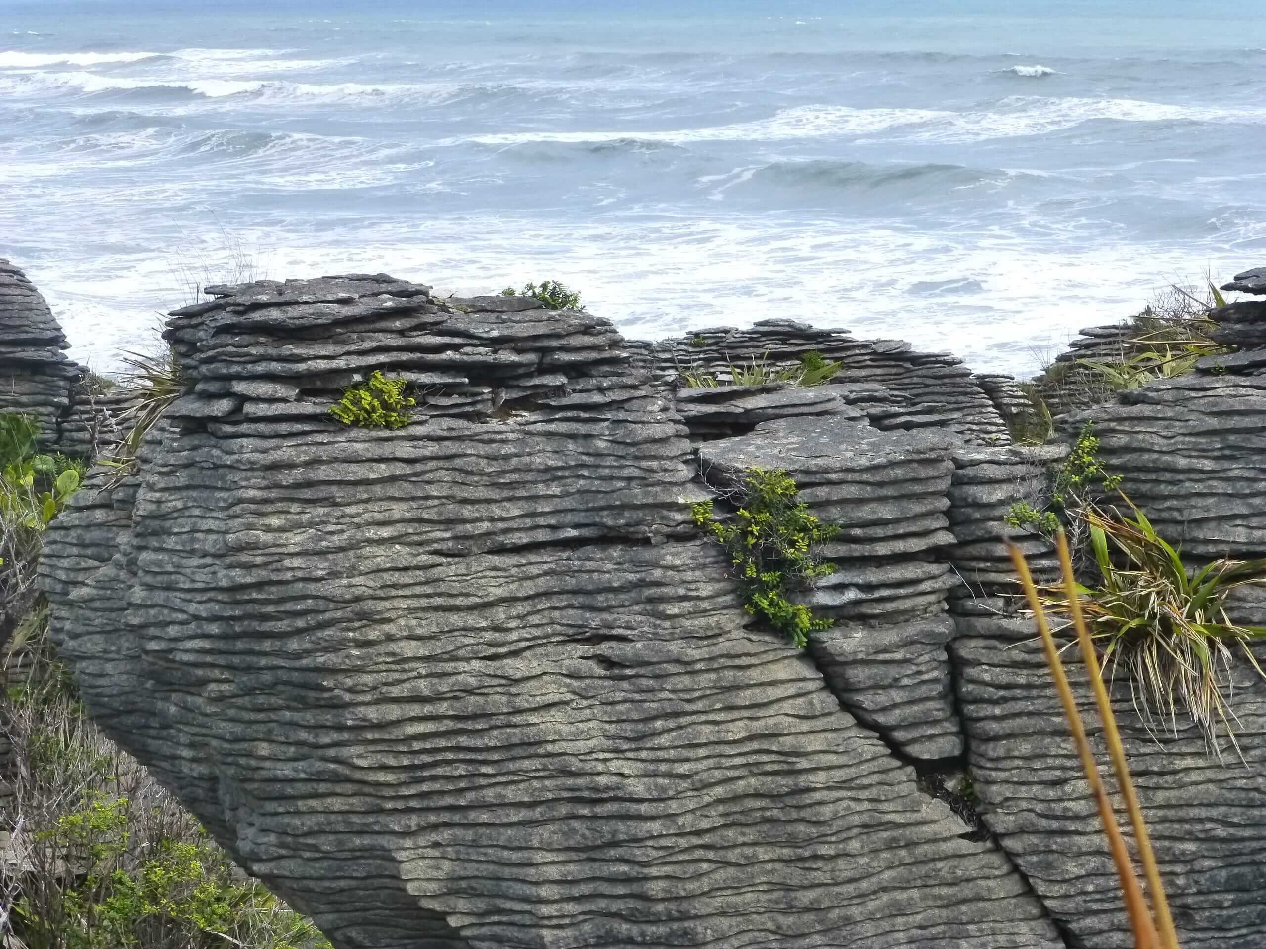 Pancake Rocks, Walk Way, Westküste Neuseeland 6