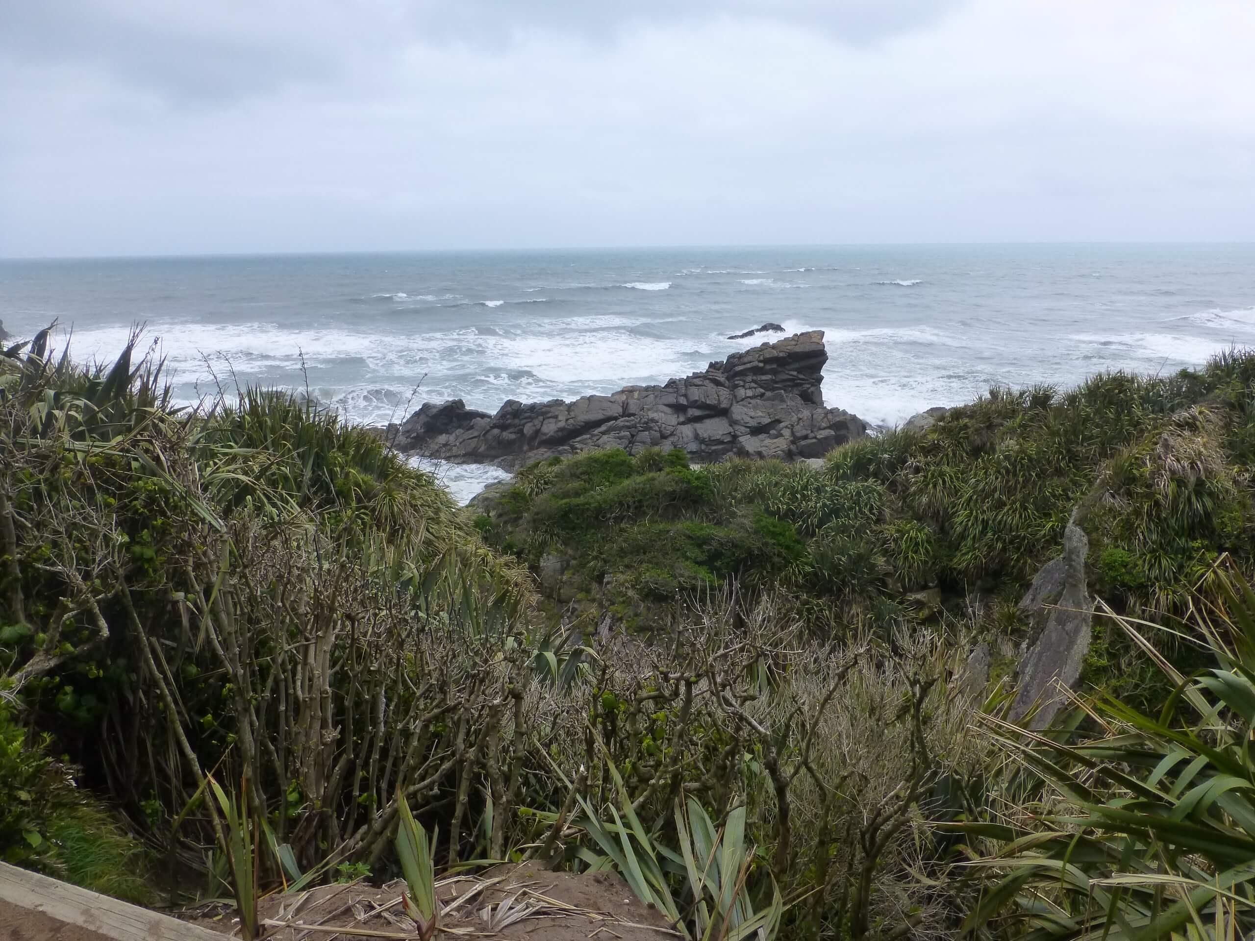 Tauranga Bay, Westküste, NZ 5