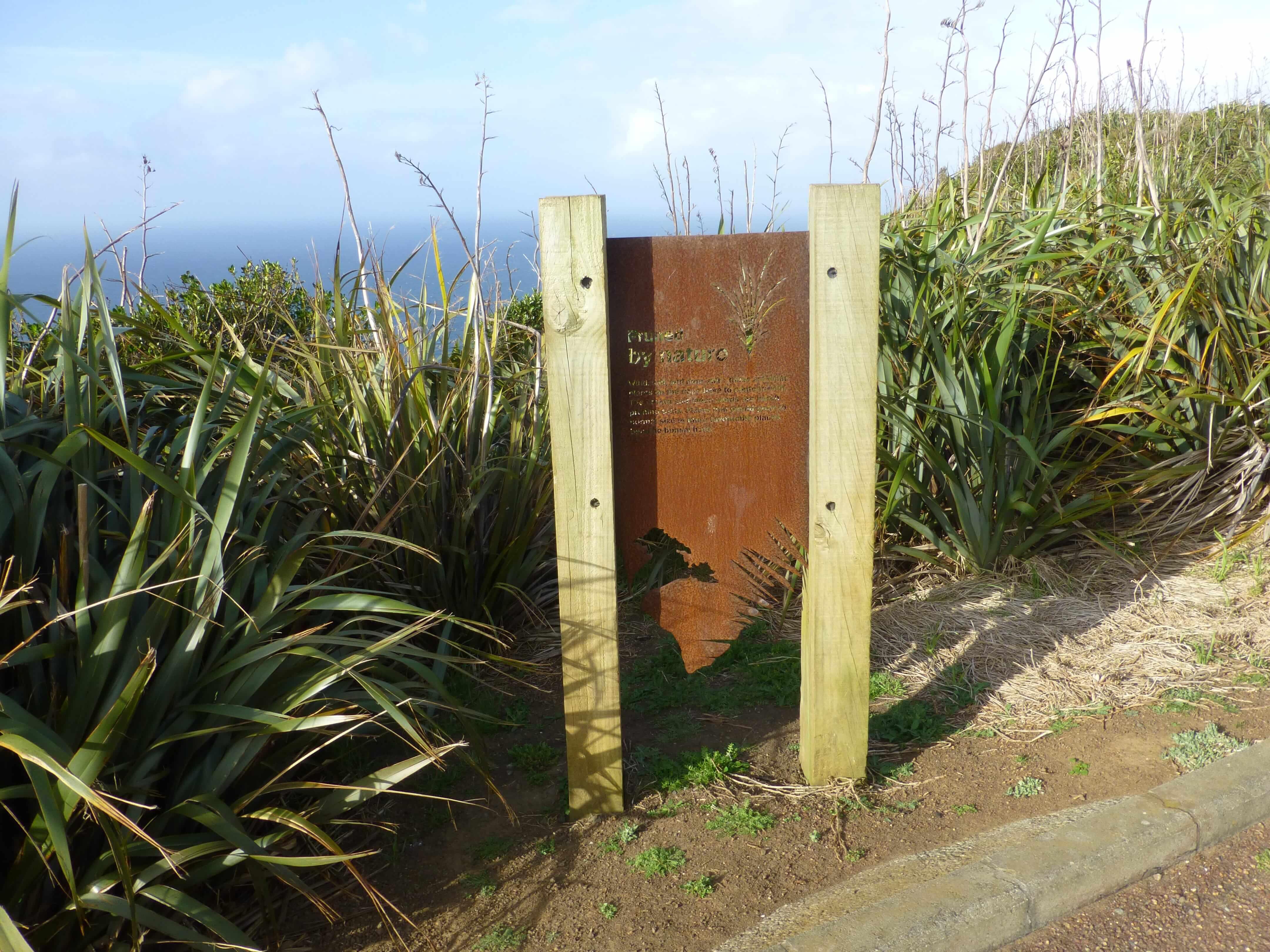 Infotafeln am Cape Reinga 14