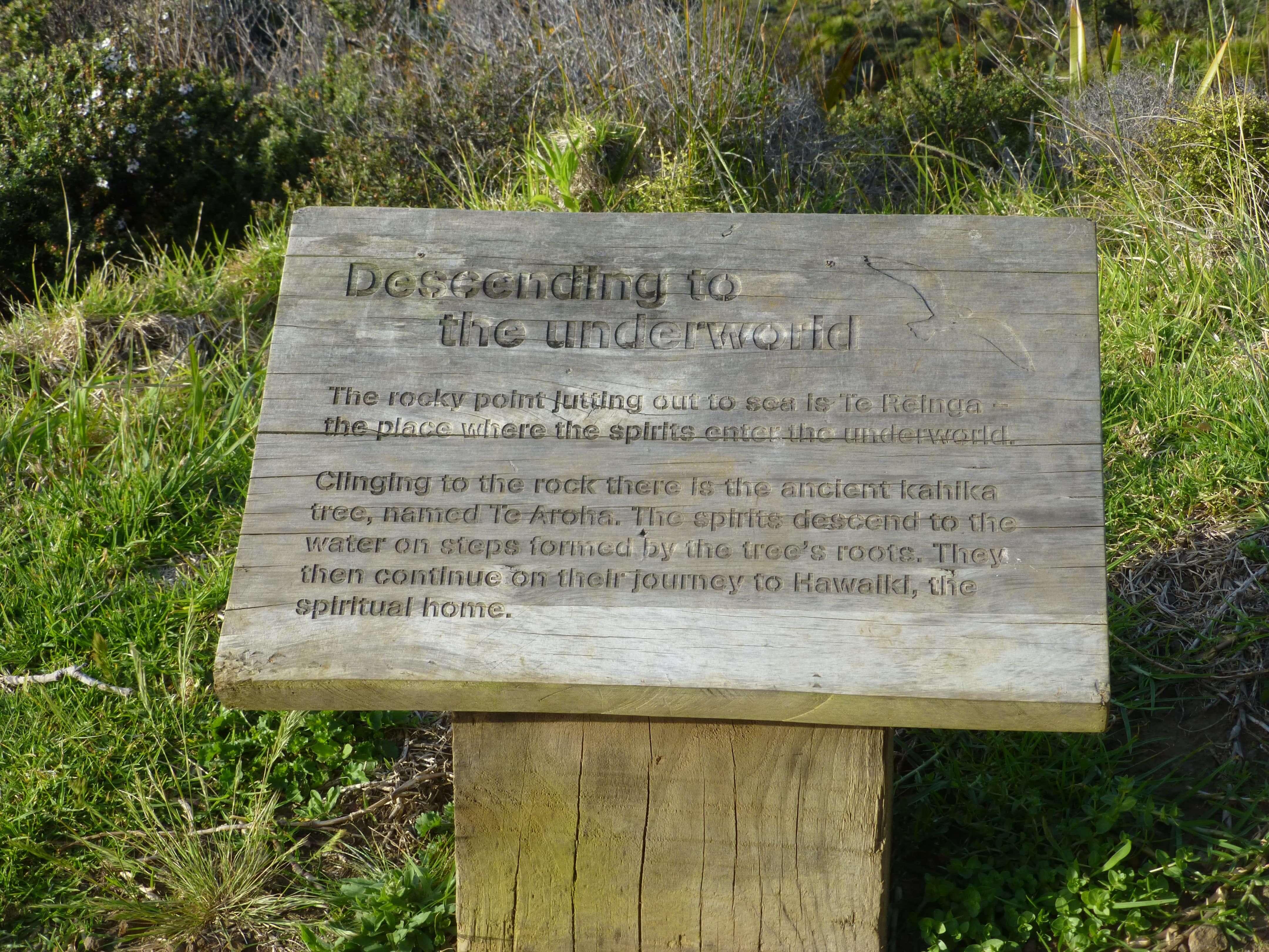Infotafeln am Cape Reinga 18