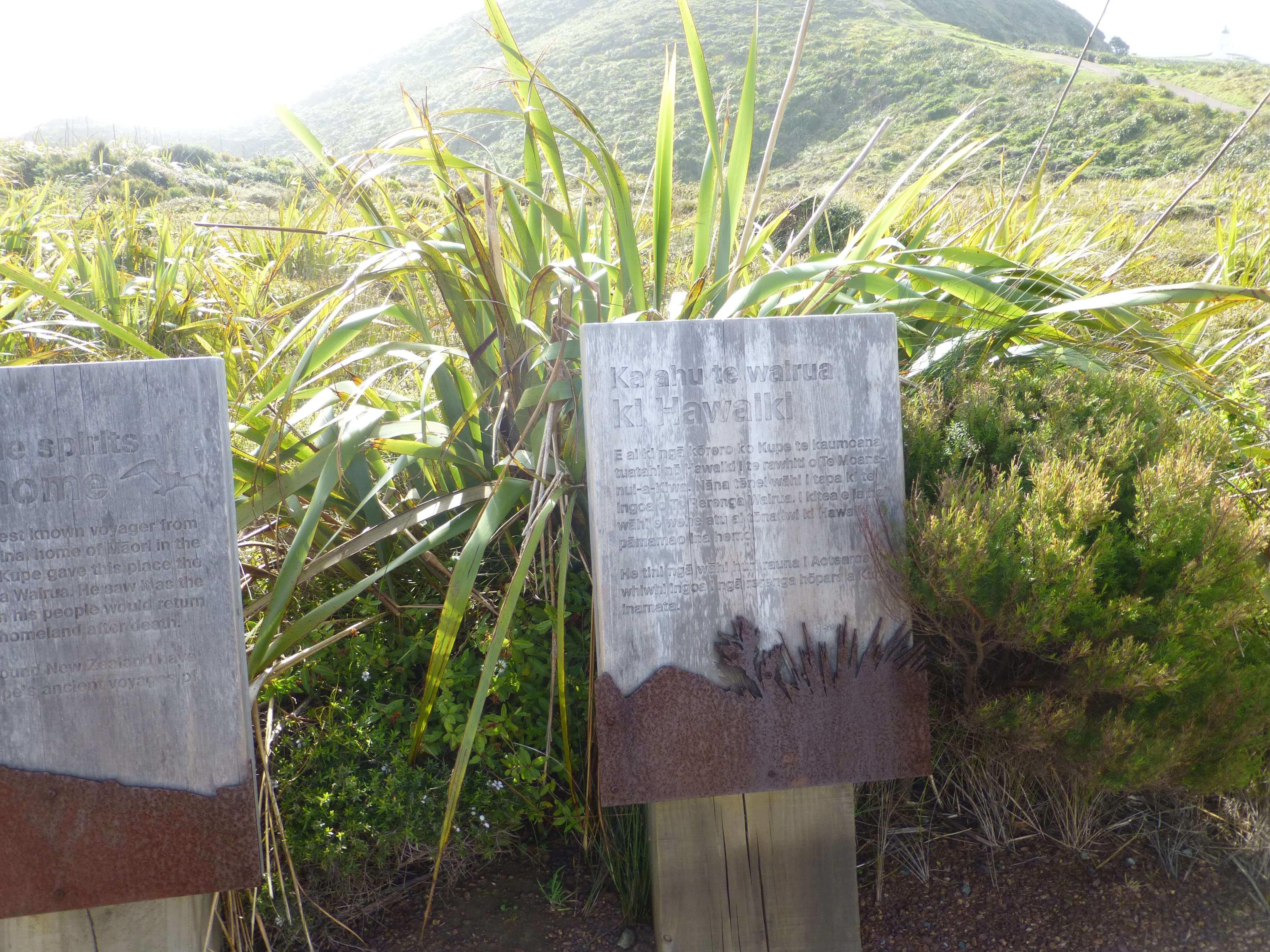 Infotafeln am Cape Reinga 2