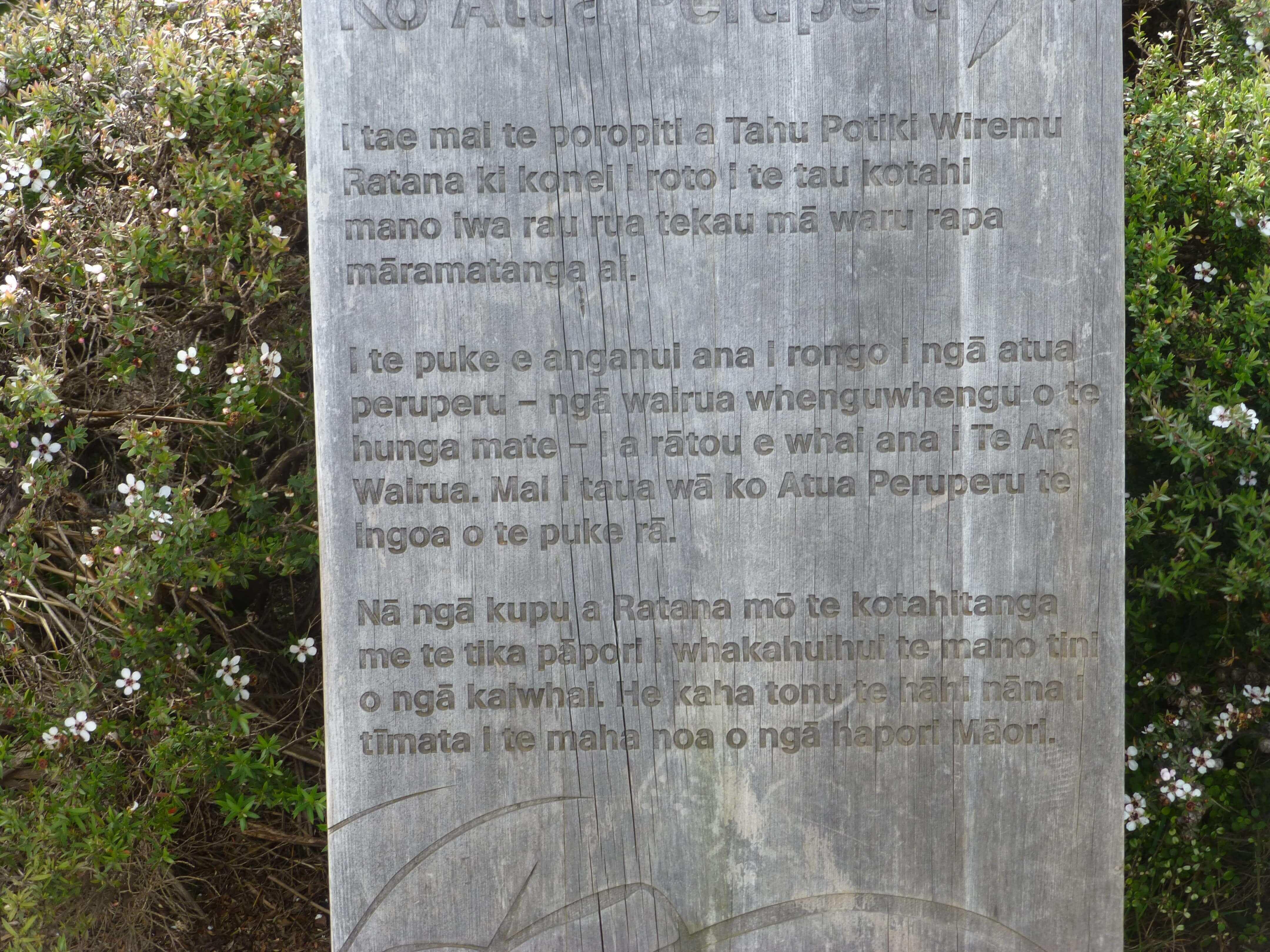 Infotafeln am Cape Reinga 6