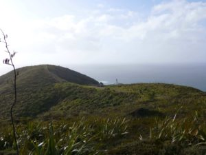 Neuseeland, Leuchtturm am Cape Reinga 2